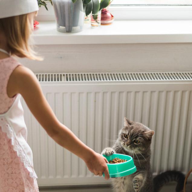 nena-nina-chica- alimentando-comida-pienso-gatito
