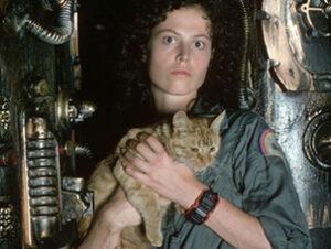 © Twentieth Century Fox Jones Jonesy Nombres de gatos del mundo del cine