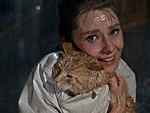Filmax Desayuno con diamantes Nombres de gatos