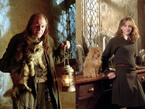 © Warner Bros Harry Potter Nombres de gatos del mundo del cine