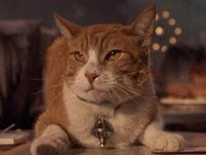 © Sony Pictures Orión en Hombres de Negro Nombres de gatos del mundo del cine