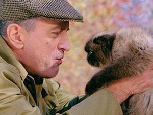 © Universal Pictures Mr Jinx Gafe en Los padres de ella Nombres de gatos del mundo del cine