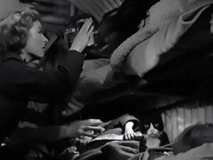Metro Goldwyn Mayer La señora Miniver Nombres de gatos del mundo del cine