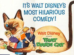 © Warner Bros Corriente continua en Un gato del FBI Nombres de gatos del mundo del cine