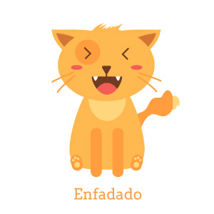Lenguaje gatos adoptantes enfadado