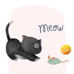 adoptar gatos pequeños 3 a 6 meses salud ilustración cachorro jugando