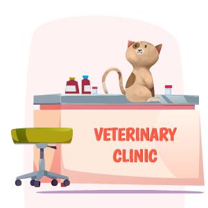 adoptar gatos pequeños cachorros de 3 a 6 meses vacunación