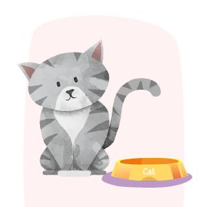 ilustración gato entre 6 y 18 meses